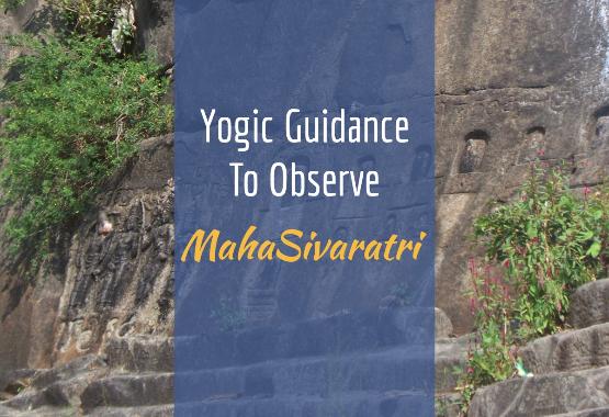 Yogic Guidance